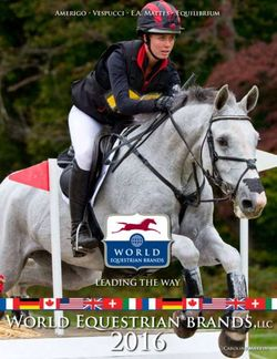 World Equestrian Brands. Leading the Way. Amerigo, Vespucci, E.A. Mattes, Equilibrium.