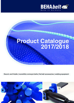 BEHAbelt Product Catalogue 2017/2018